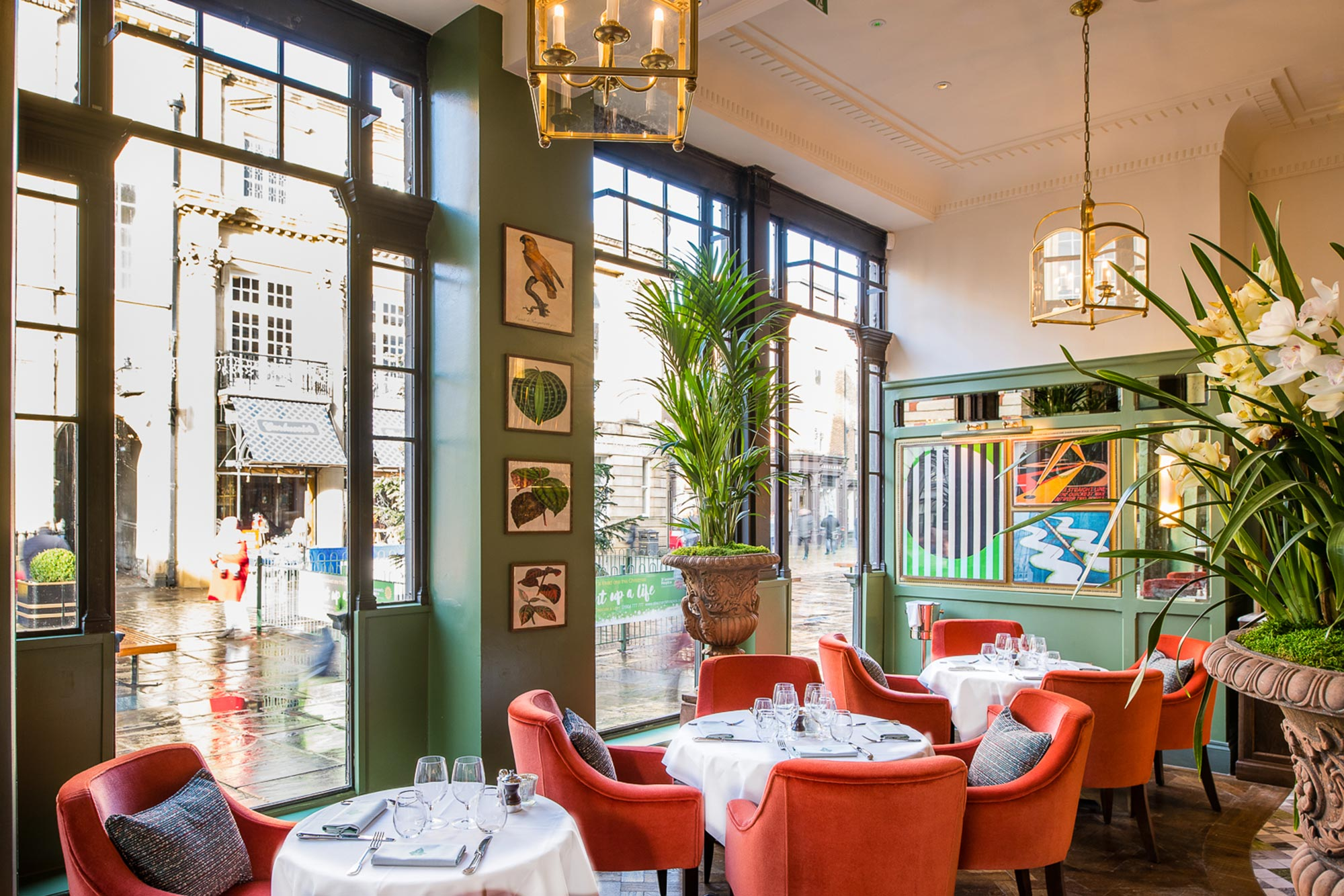 Places to eat in York, The Ivy St. Helen's Square Restaurant - The Ivy York