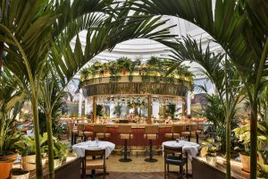 Restaurants in Cheltenham, The Ivy Montpellier Brasserie