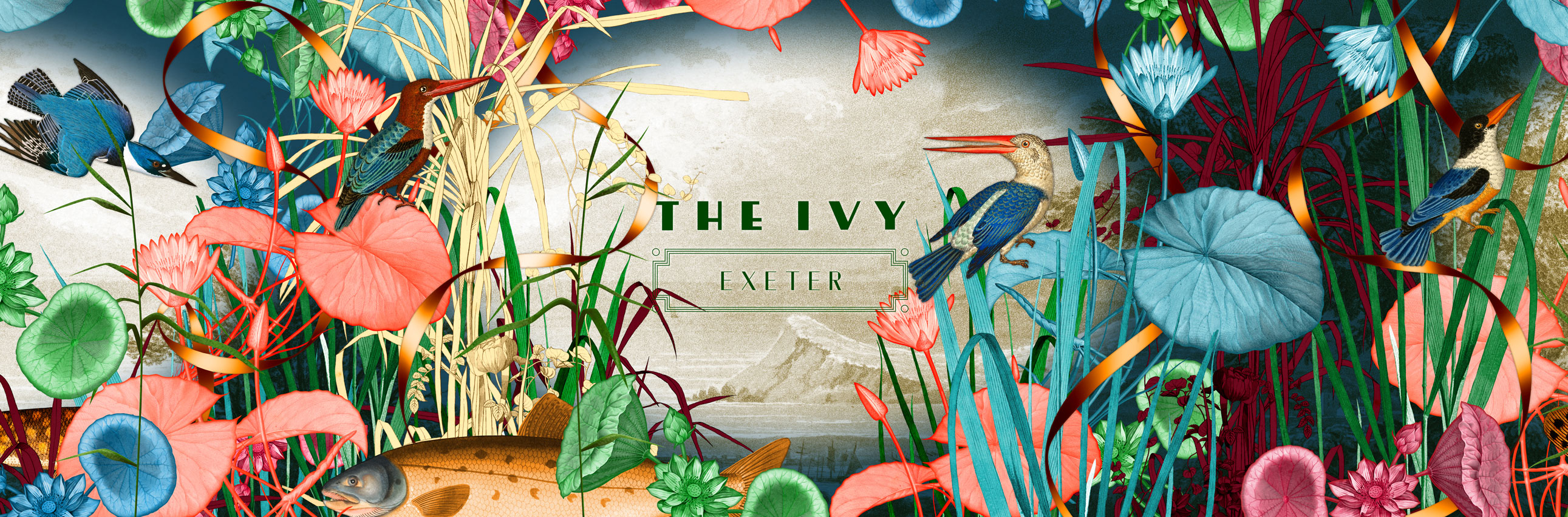 Sign up to our newsletter - The Ivy Exeter