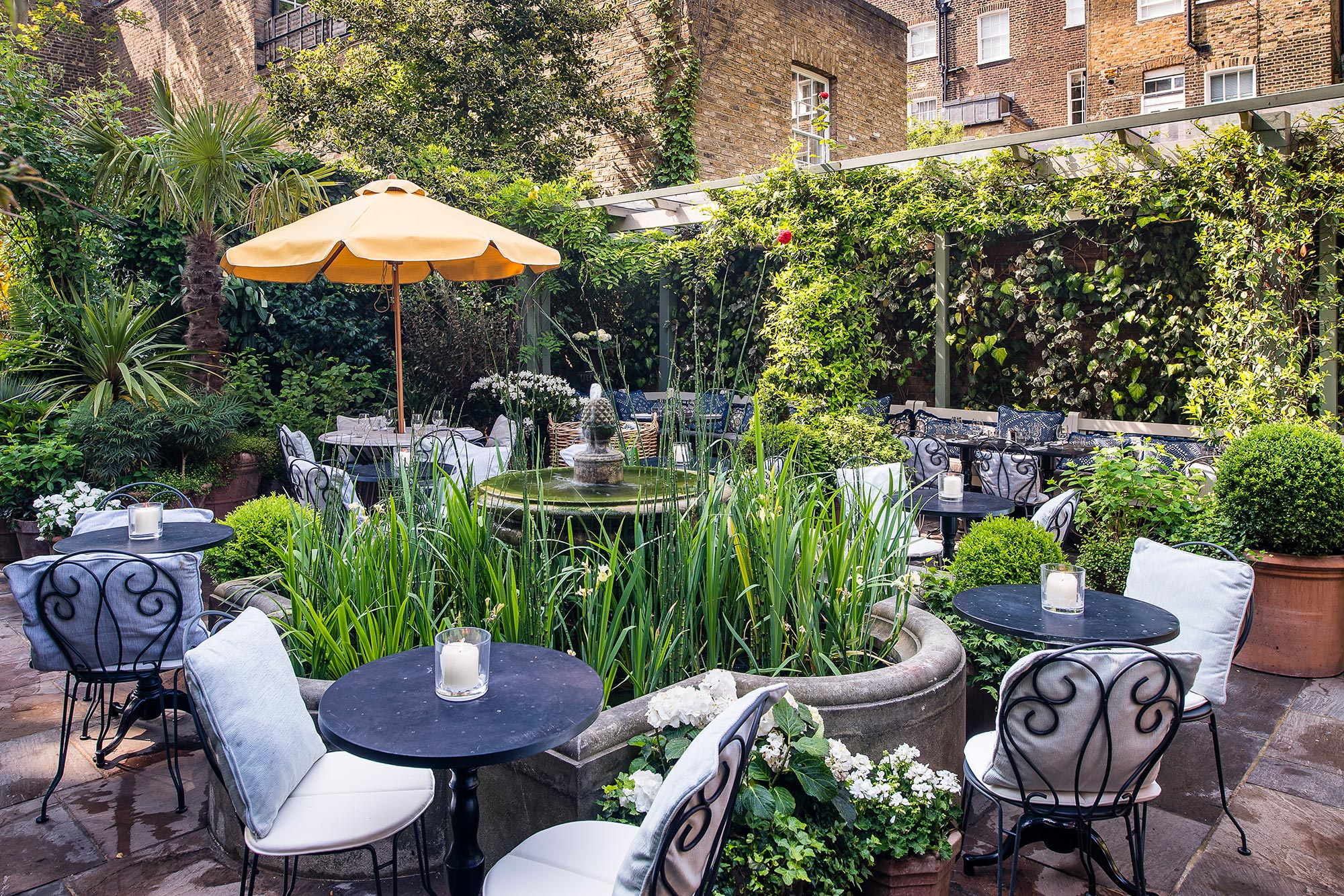 Al Fresco Dining at The Ivy Chelsea Garden - The Ivy Chelsea Garden